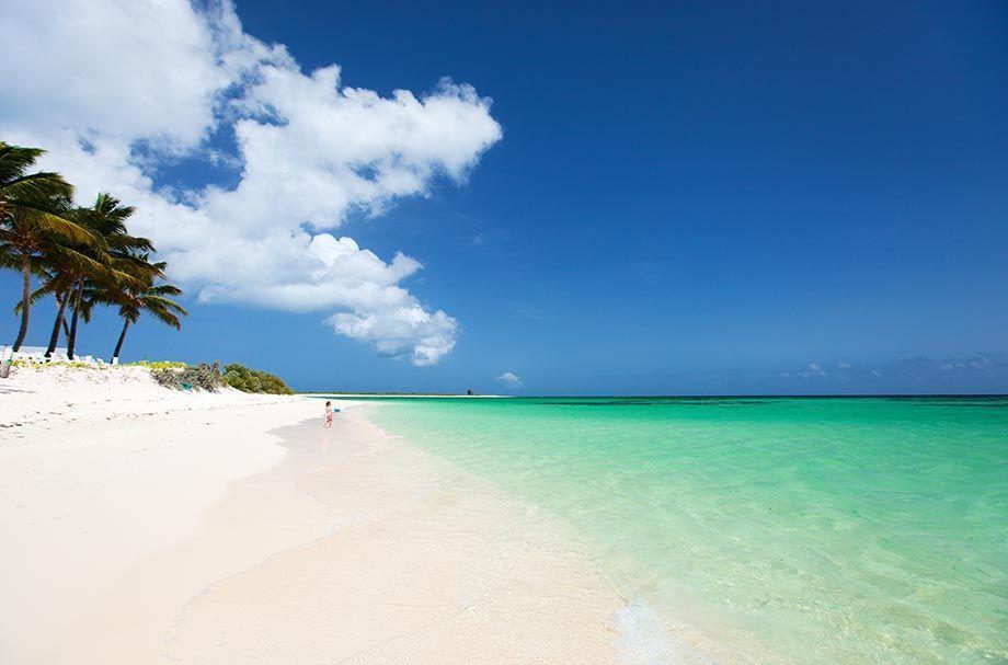 Scrub Island British Virgin Islands - Wikipedia